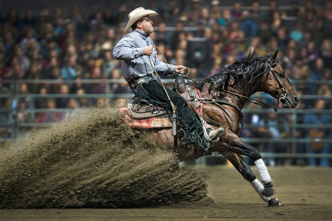 Reining: Clay Webster