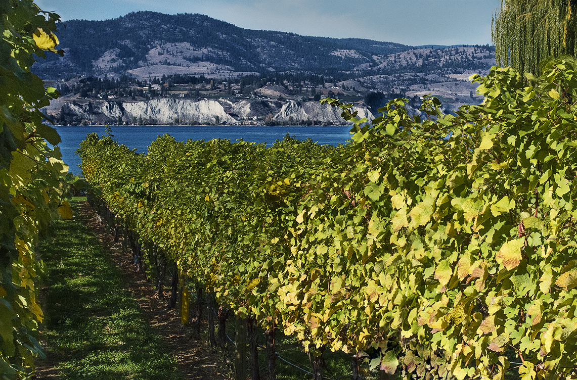 Kettle Valley Winery